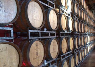 Les fondamentaux de la viticulture
